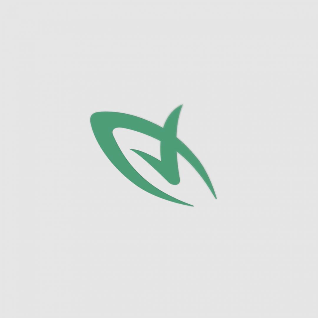 Leaf Perspective Logo Mockup